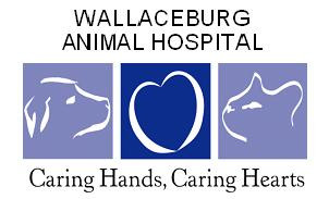 Wallaceburg Animal Hospital